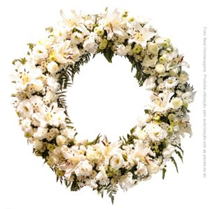 Coroa de Flores – Americana II
